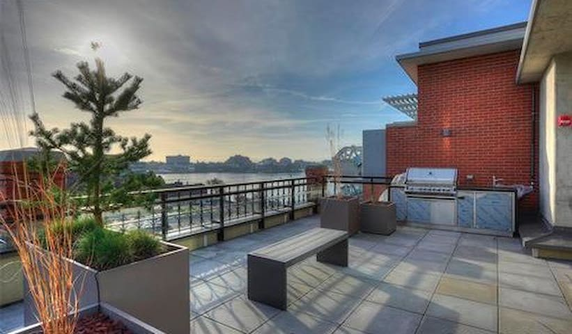 Roof top patio - common space