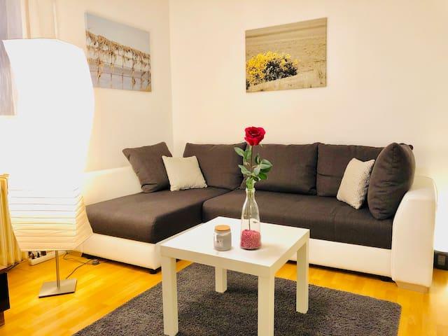 Souterrain Wohnung, ein gemütliches Wohn-/Schlafzimmer, eine Küche, ein Bad mit Dusche und ein Flur