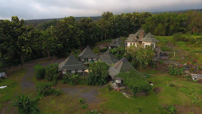 Hawaiian Hut Village + Dance Studio & Lagoon