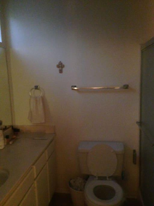 private bathroom huge sink