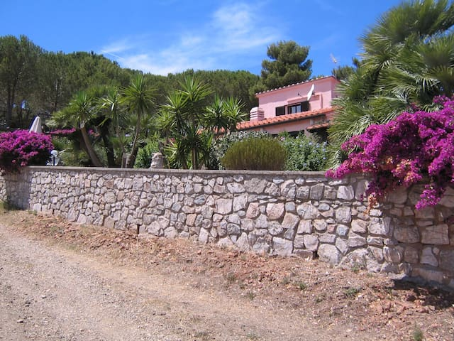 "Country-house view of the sea Ap.""B"" - Porto Azzurro - Daire"
