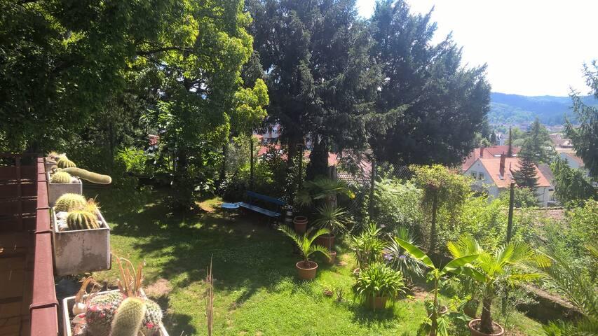 Wohnen im Grünen nahe des Europa-Parks I
