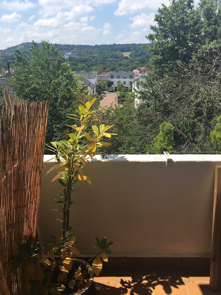 Gemütliche 2 Zi-Wohnung mit toller Aussicht