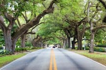 Coral Gables 5 minutes from home
