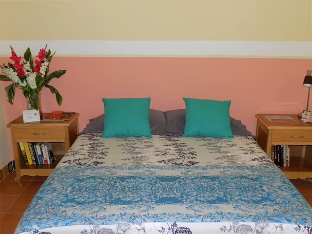 Room for Single Travelers - CASA CARMITA B & B - Merida - Bed & Breakfast