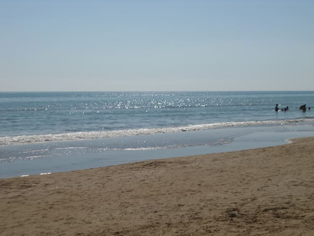 Sea at 100 meters all inclusive - Pineto - Apartment