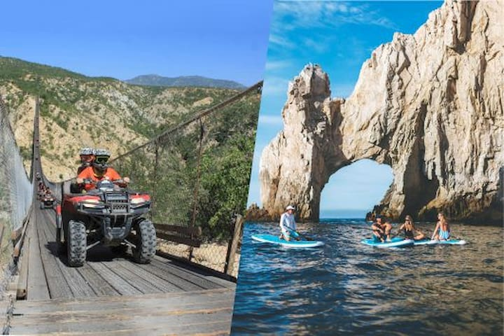 Activities To Do in Cabo