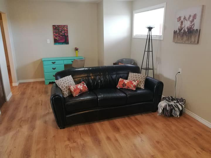 Comfy bright lower suite close to VIU and downtown