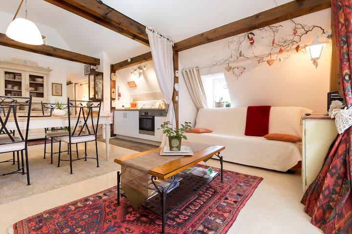 """""""L'ÂME d'ANTAN""""  ** - Colmar - Apartment"""
