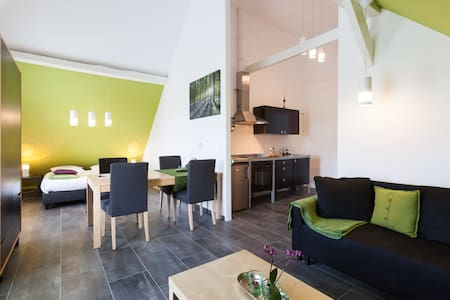 Royal appartement 2 + evt. Wellness - Beemte Broekland