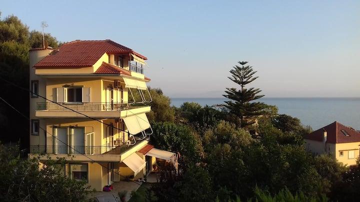 Sunny Apartments