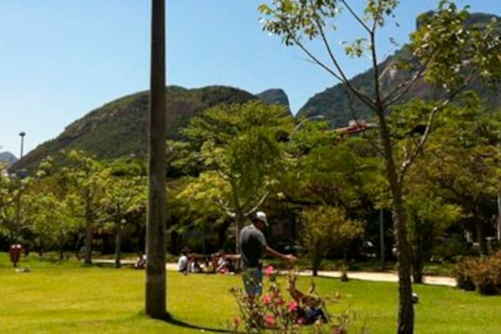 Park in front of the building. This park is called Praça do Pomar and is open to public.