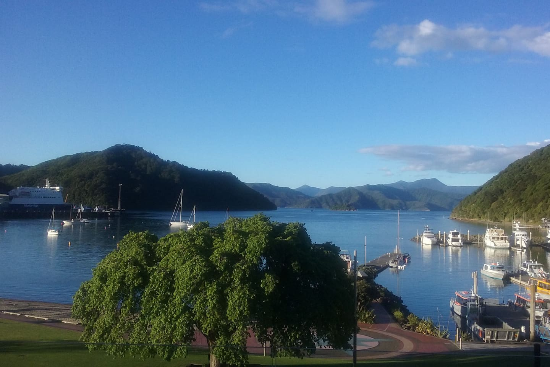 Stunning harbour views