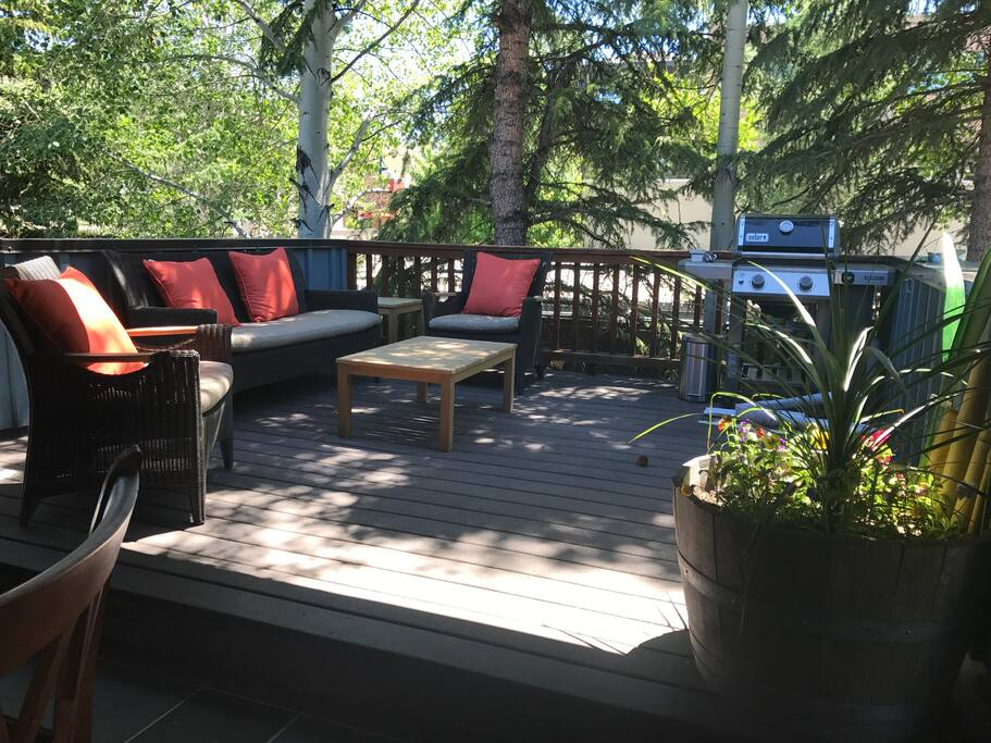 private back deck with BBQ