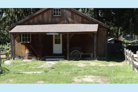 Annie's Place. Cottage on Horse/Animal/Rescue Farm - East Haddam - Ξυλόσπιτο