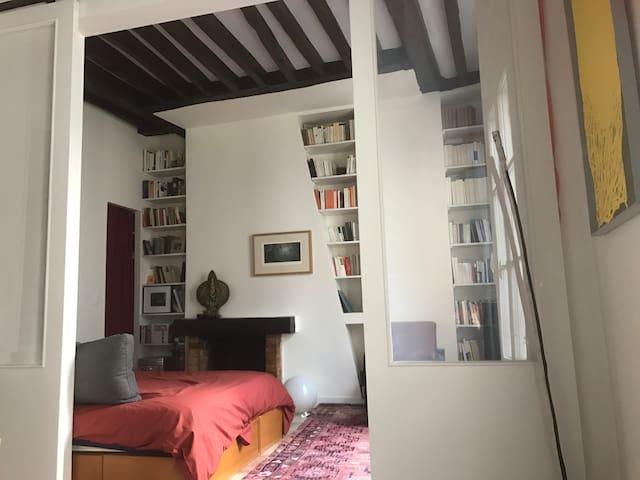 Appartement au cœur du Paris chic
