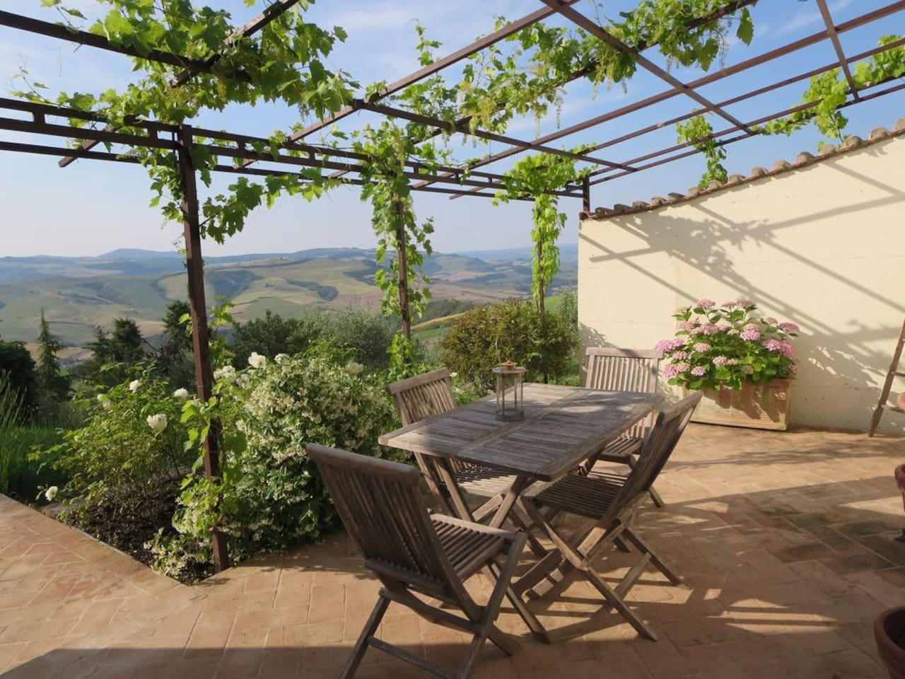 View of hills from the grape vine covered pergola