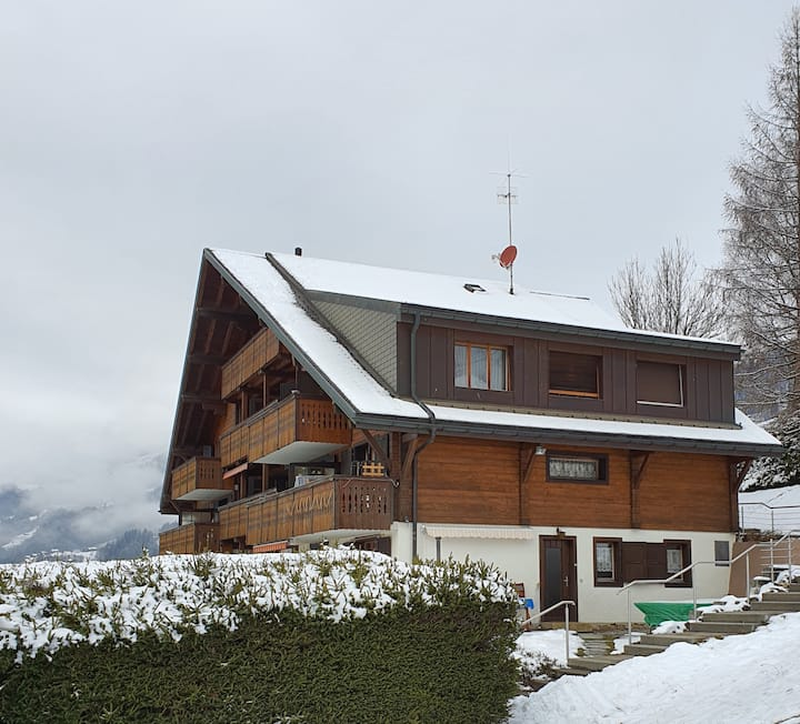 Appartement ski 10 min on foot breathtaking view