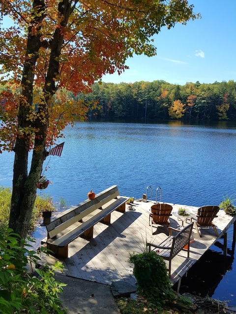 CHARMING CABIN: lakefront,nestled in nature,canoe