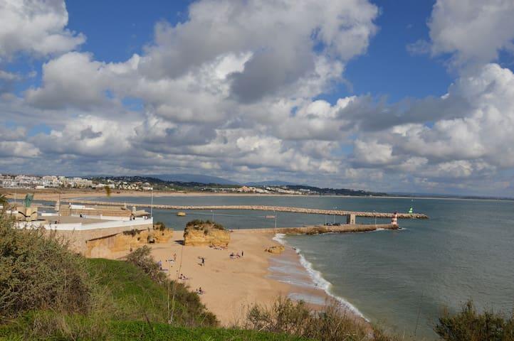 Batata Beach | Meia Praia Beach