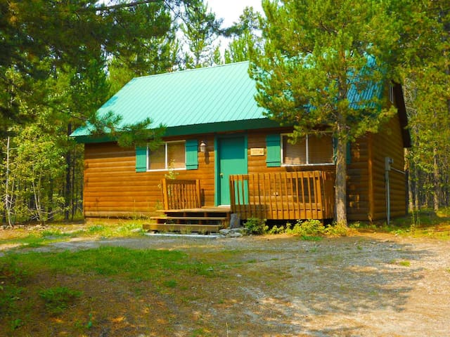 Rustic cabin in wooded area - Island Park - Cabin