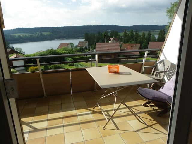 Très beau studio avec très belle vue sur le lac