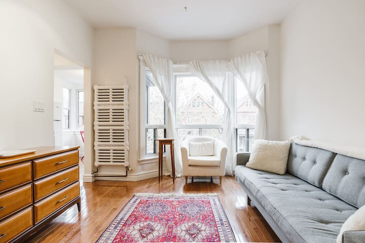 Bright Private Suite in Roncesvalles Victorian!