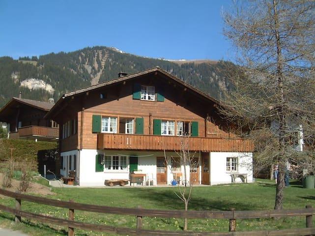 Falkiport: gut eingerichtete Wohnung mit Bergsicht - Adelboden - Apartment