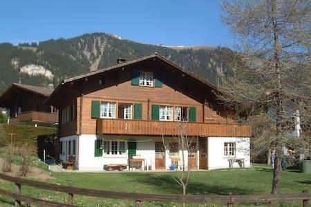 Falkiport: gut eingerichtete Wohnung mit Bergsicht - Adelboden - Huoneisto