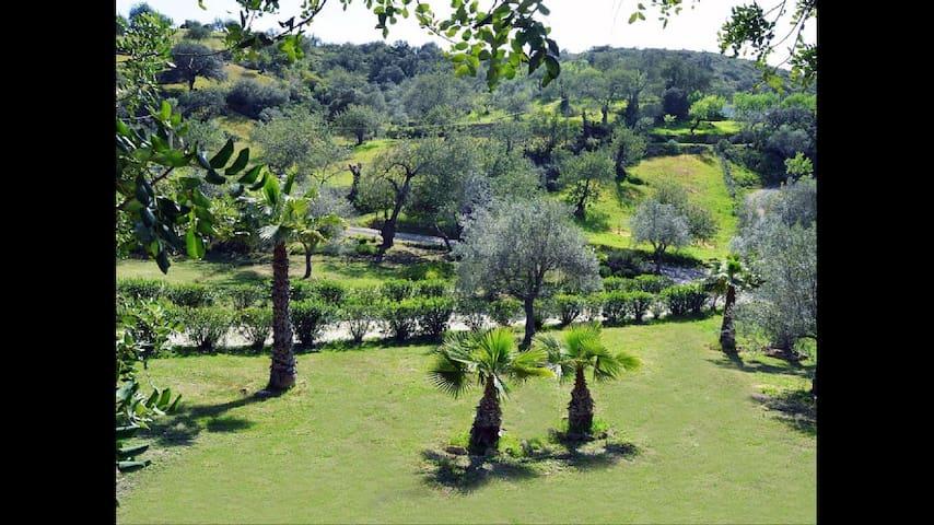 Rustic quiet house, pool & garden - São Brás de Alportel - Hus