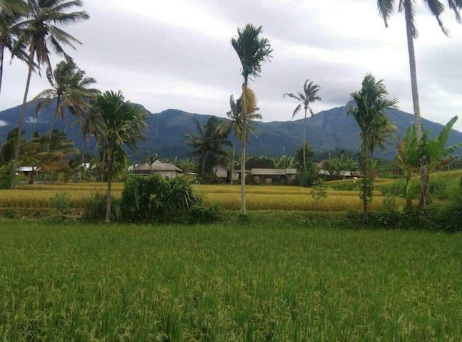Ahim Homestay with the Local Lifestyle