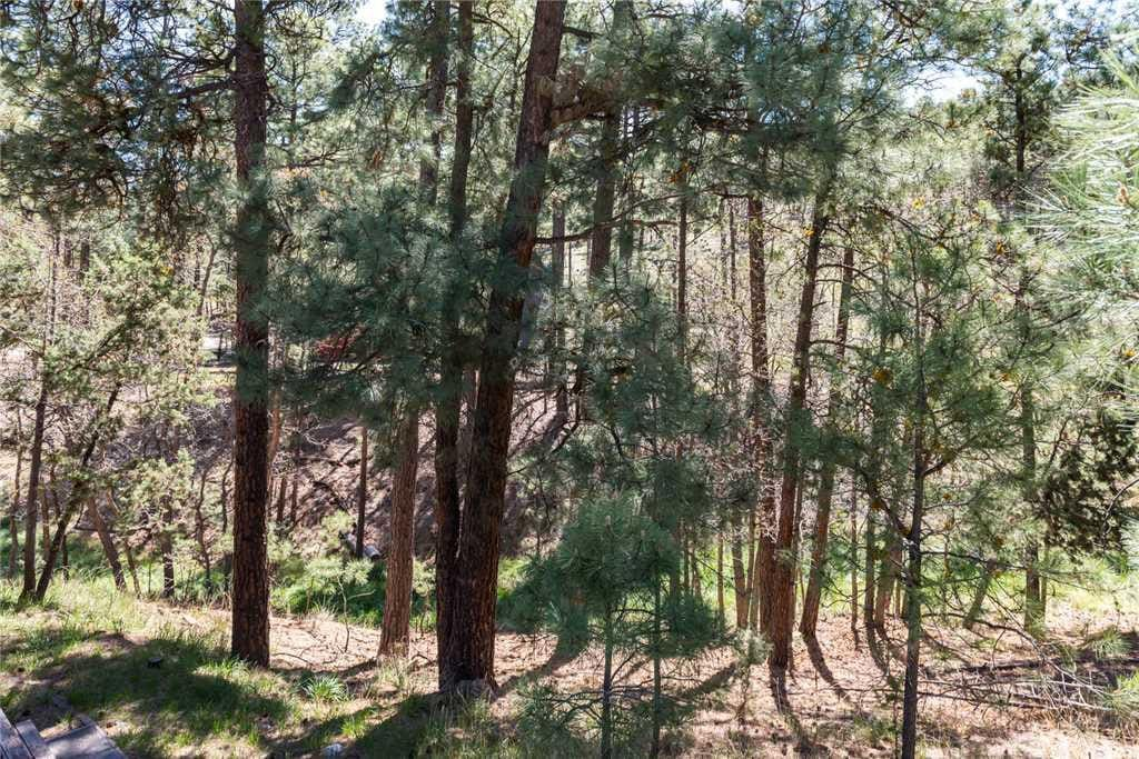 Ruidoso enjoys an entire range of seasons, ranging from snowy winters to bright, cool summers.