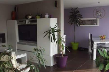 Appartement proche Annecy avec 1 lapin et 1 chat - Seynod - Apartmen