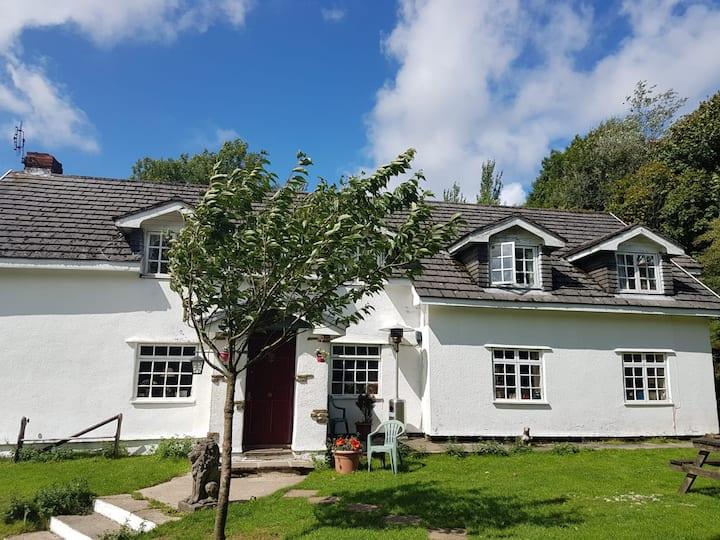 Coynant Farm Guesthouse - Gower, Swansea, Wales