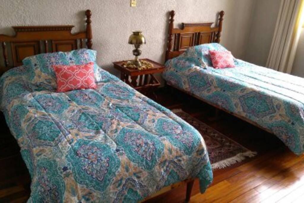 Dos camas individuales