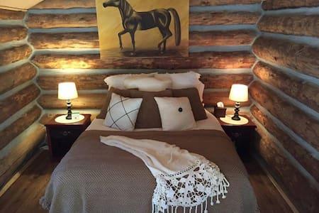 Rustic Cabin - Ashcroft - Altro