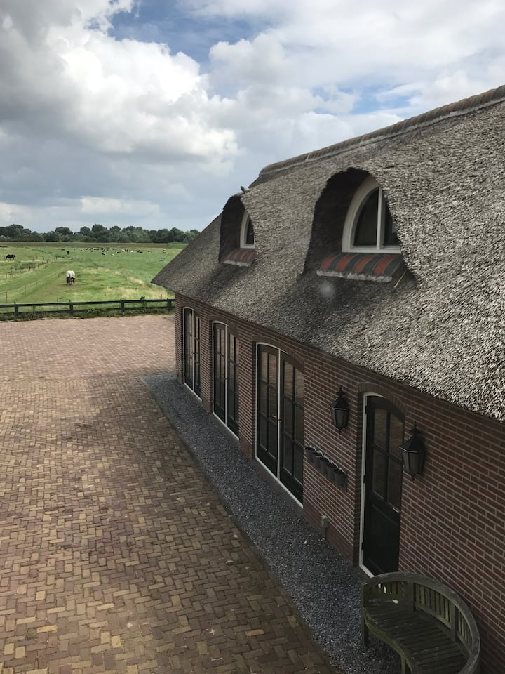 Cozy thatched roof guest house near Amsterdam!
