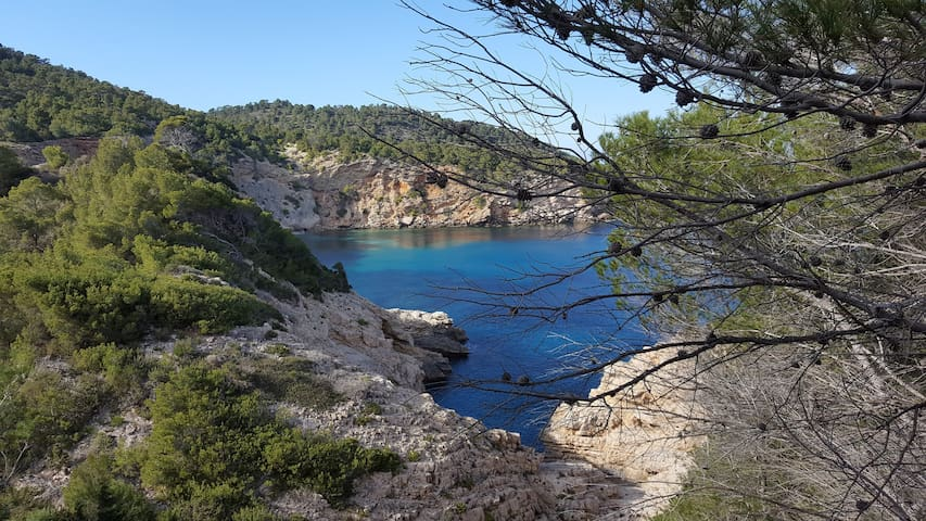Sea & Forest Cala San Vicente, Apto vistas al mar - Cala de Sant Vicent