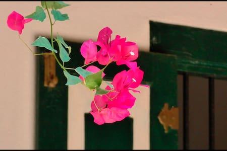 Kanattewatte: Sri Lanka's Garden Side - Ambalangoda