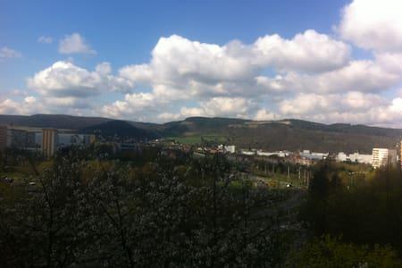 gemütliche 1-Zimmerwohnung in Jena - Jena