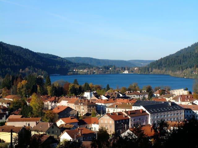 Vue panoramique sur lac et forêt - Gérardmer - Byt