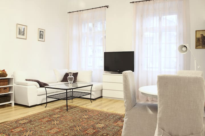 Bright and classy flat in the center - Prague - Apartment