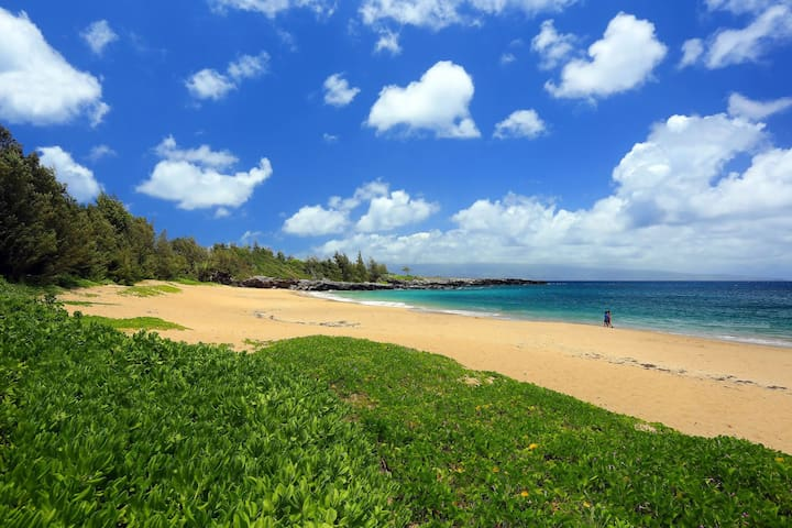 D.T. Flemings Beach is one of the three beaches in the resort. All three beaches are within walking distance from the villa