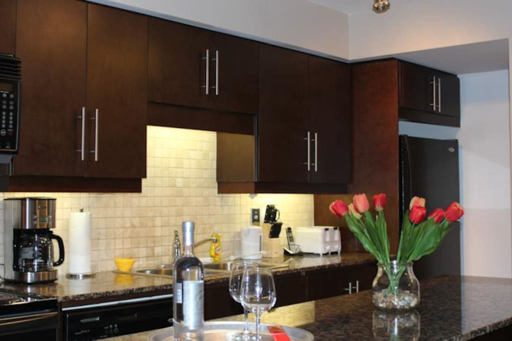 Furnished Condo At Downtown Toronto 1 Bedroom Apartments For Rent In Toronto Ontario Canada
