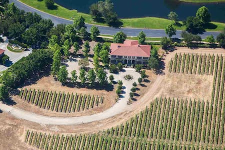 Palazzo Vineyard Estate, a Luxury Family Getaway - Pleasanton - Villa