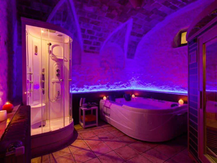 Spa con jacuzzi, sauna y ducha de hidromasaje