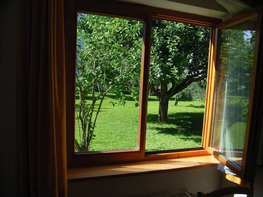Apartment Denk - Blick in den Garten