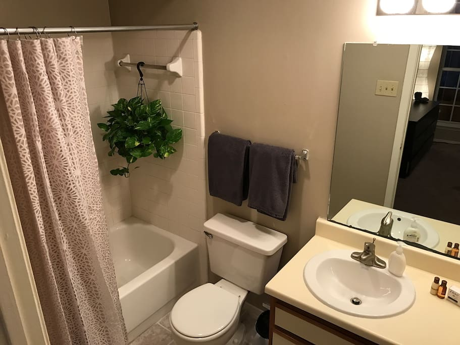 Walk-in bathroom