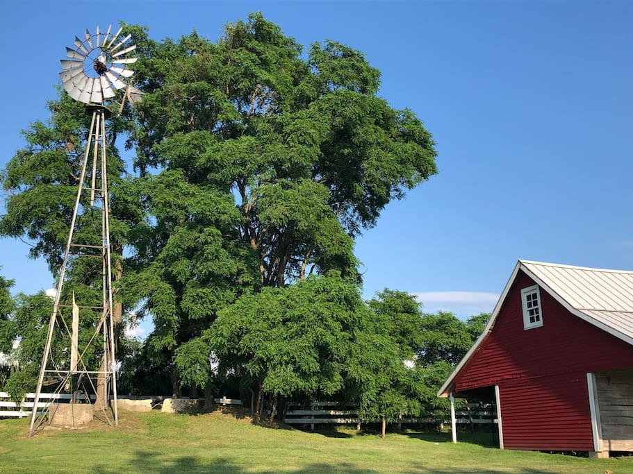 Original Windmill and Granary