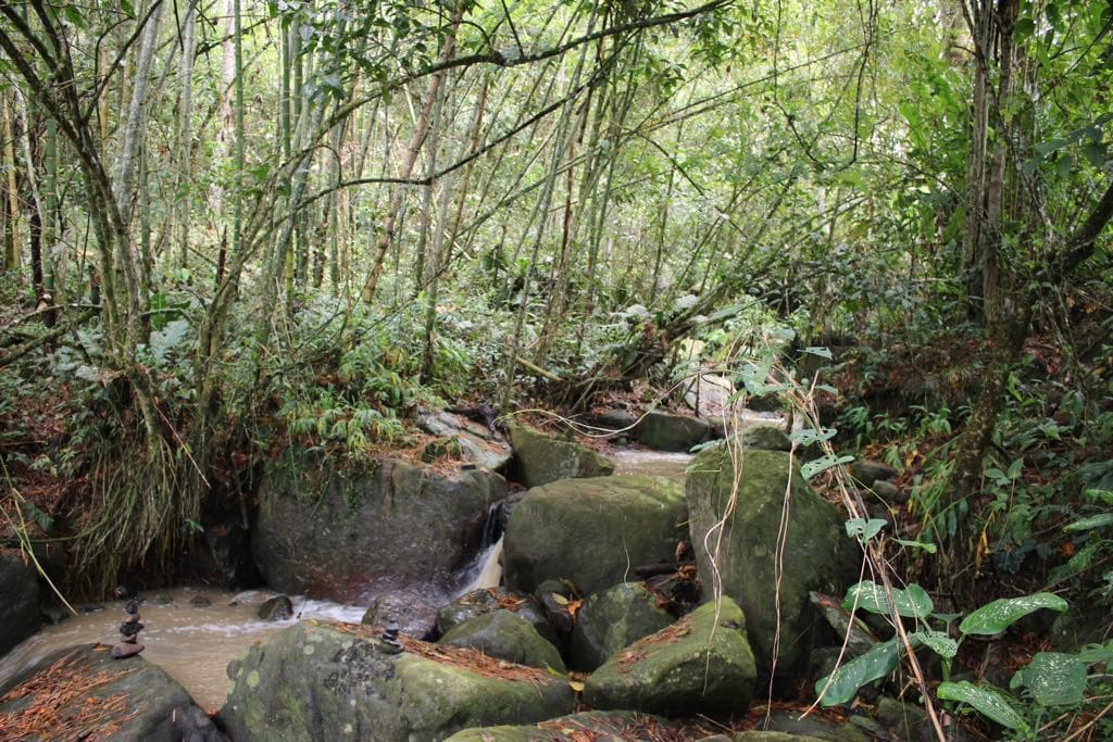 Linda quebrada especial para meditacion y contacto con la naturaleza